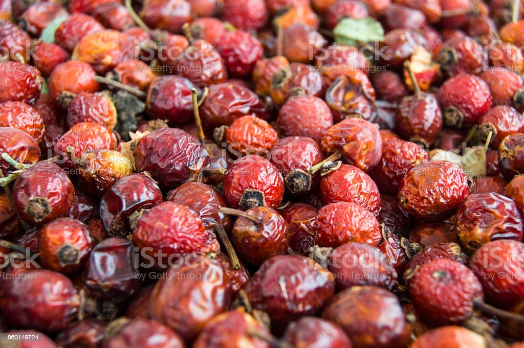 natural rosehip paintings dried on wooden floors, pictures of rosehip dried to make rosehip tea in the winter months, stock photo
