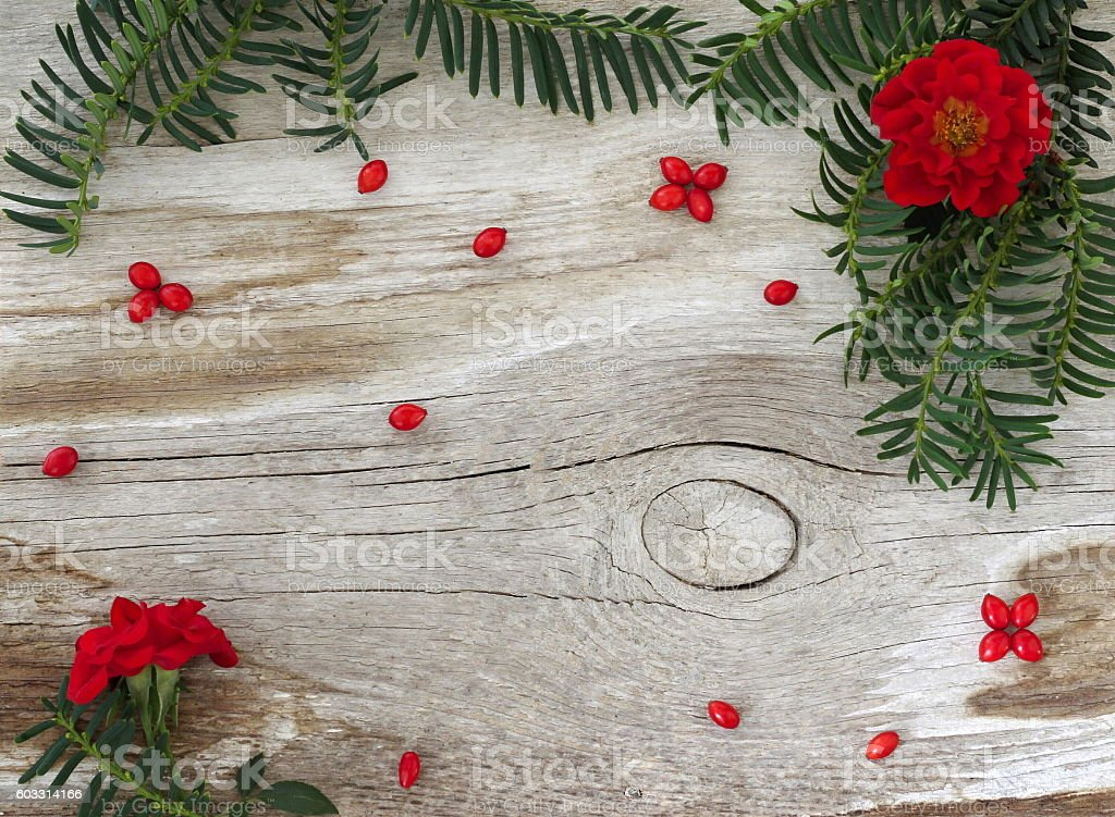 Natural Rustic Fall Winter Background With Wood Needles Flowers Berries Royalty