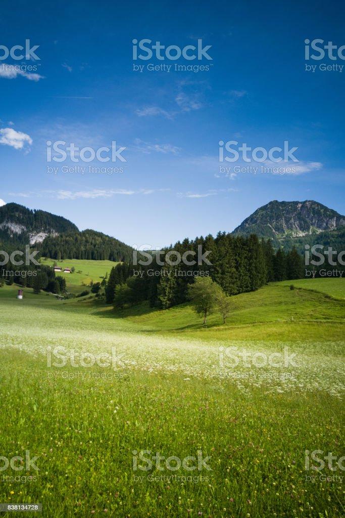 Natural scenery on the way to Hallstatt of Austria stock photo