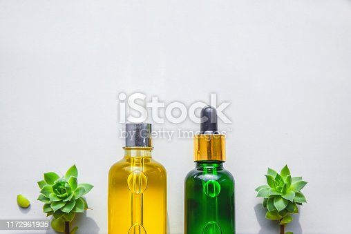 istock Natural serum from extracts in a glass bottles with a pipette. Succulents, white background. 1172961935