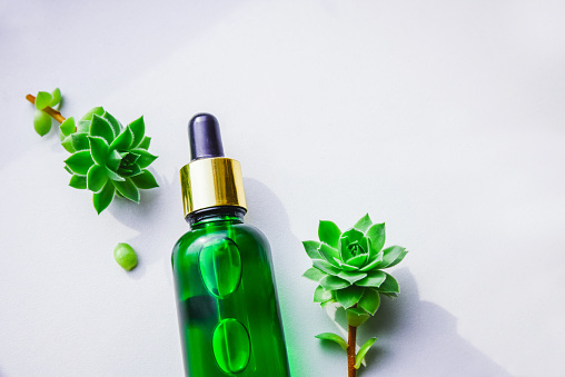 istock Natural serum from extracts in a glass green bottle with a pipette. Succulents, white background. 1172961921