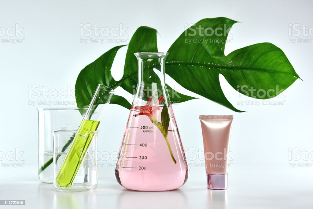 Natural skin care beauty products, Natural organic botany extraction and scientific glassware, Blank label cosmetic container for branding mock-up. stock photo