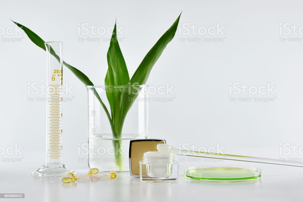 Natural skincare, Organic plant extract pharmaceutical cosmetics, Equipment and science experiments, Healthcare research and development concept. stock photo