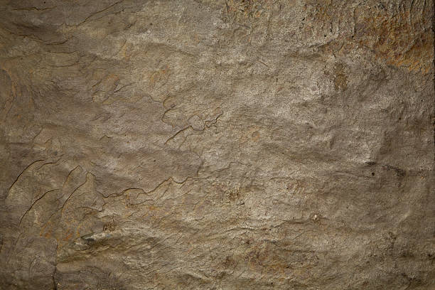 natural slate background - 岩石 個照片及圖片檔