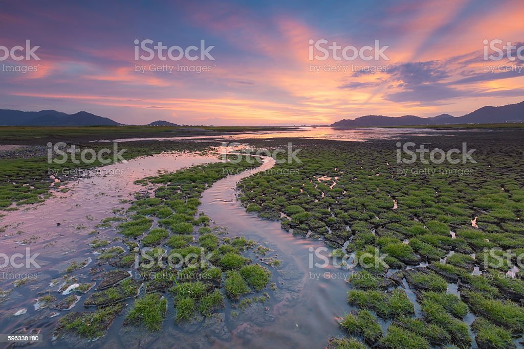 Natural small waterway over cracked land royalty-free stock photo