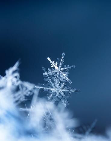 Natural Snowflakes On Snow Stok Fotoğraflar & Aralık'nin Daha Fazla Resimleri