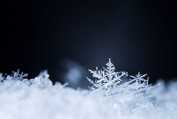 natural snowflakes on snow - ice crystal stock pictures, royalty-free photos & images