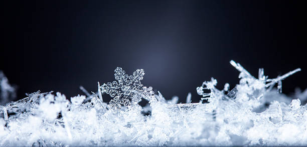 natural snowflakes on snow stock photo