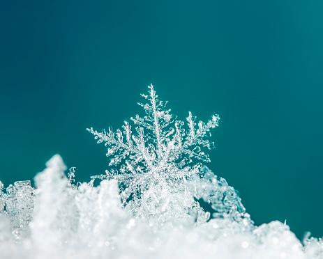 istock natural snowflakes on snow 651731414