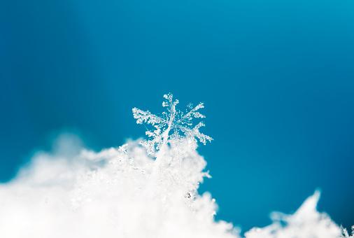 istock natural snowflakes on snow 667103964