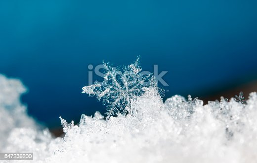istock natural snowflakes on snow 847236200
