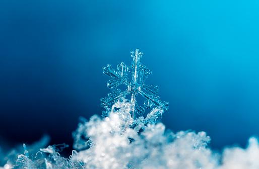 istock natural snowflakes, photo real snowflakes during a snowfall 902447700