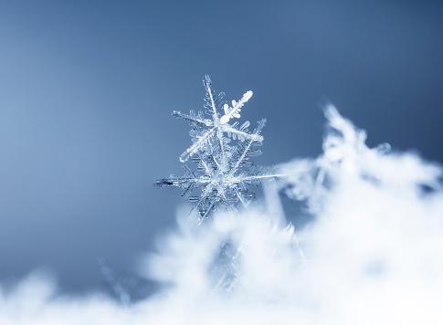 istock natural snowflakes 646231986