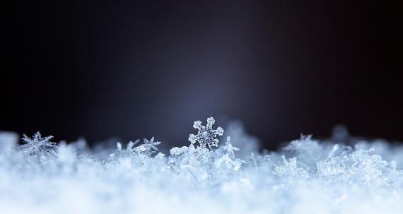 istock natural snowflakes 646232014