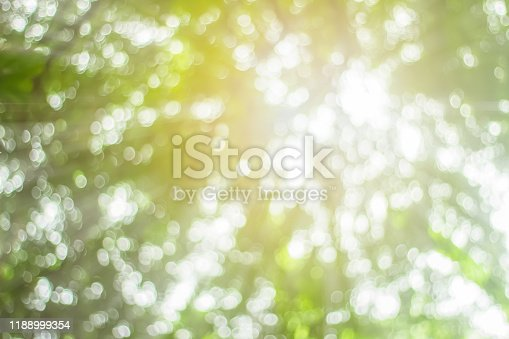 1067054470istockphoto Natural spring blurred green leaves background. Create light soft blurred colors in bright sunshine. Green bokeh abstract glitter light background. Focus texture from nature forest fresh shiny growth. 1188999354