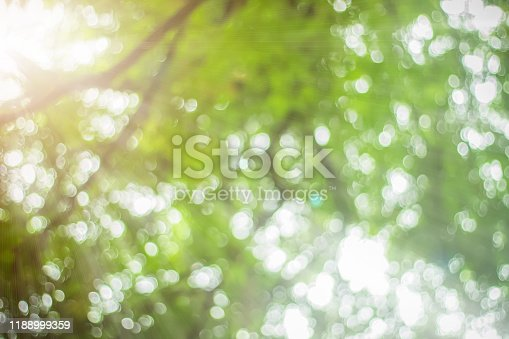 1067054470istockphoto Natural spring blurred green leaves background. Create light soft blurred colors in bright sunshine. Green bokeh abstract glitter light background. Focus texture from nature forest fresh shiny growth. 1188999359