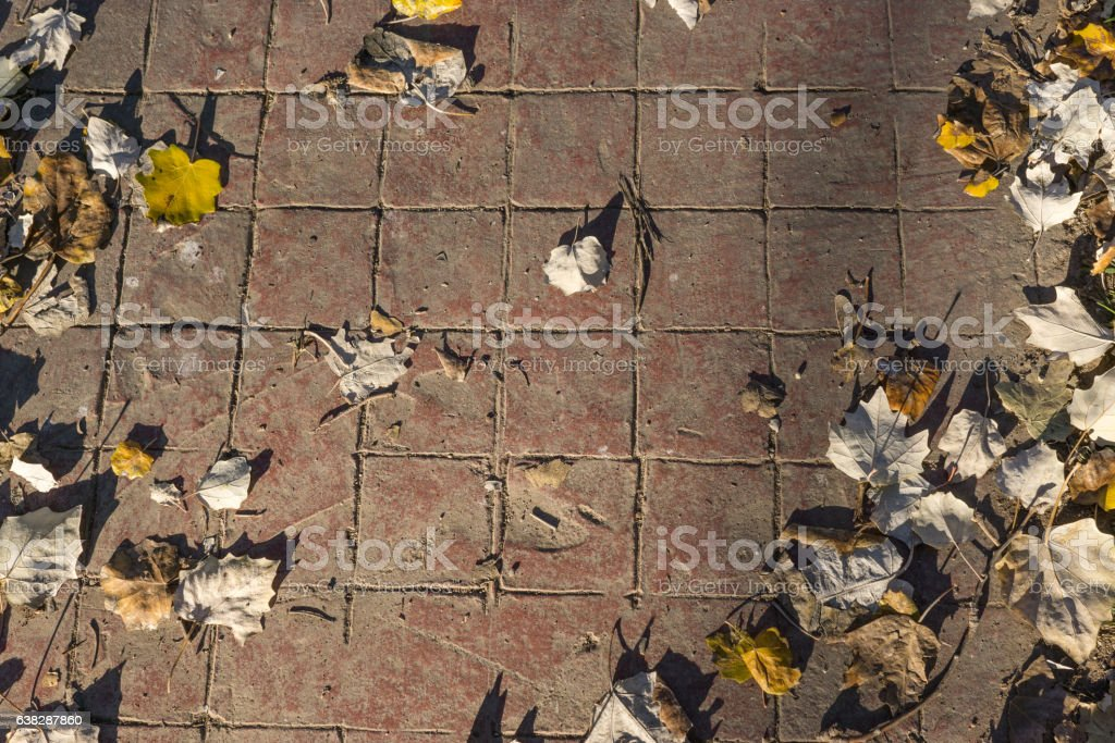 Natural stamped concrete pavement outdoor flooring decorative appearance of red stock photo