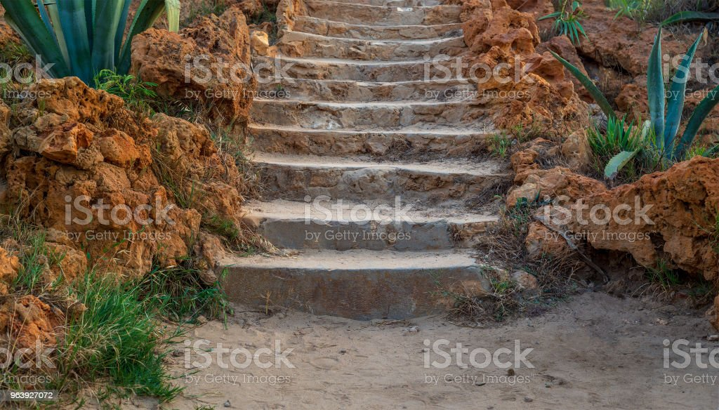 Natural stone stairway with green bushes on both sides at public park in summer time - Royalty-free Backgrounds Stock Photo