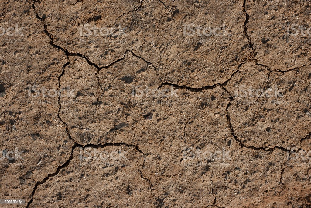 Natural texture royalty-free stock photo