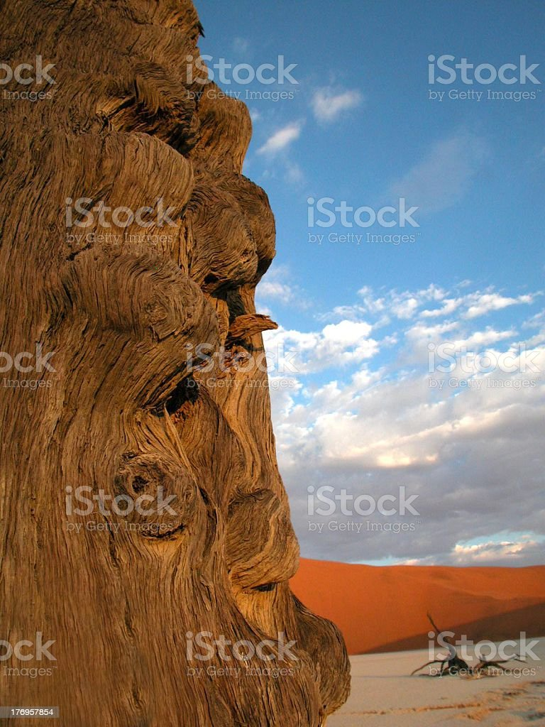 natural totem stock photo
