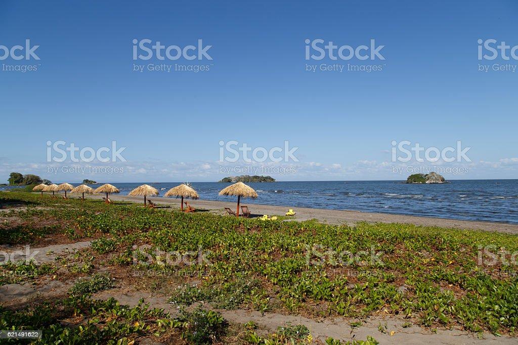 Natürliche Sonnenschirm am Strand, Sommer-Urlaub-Konzept. Lizenzfreies stock-foto