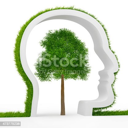 istock Natural values 473775238