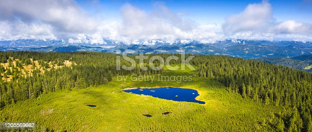 Aerial view on mountain lake (Lake Ribnisko jezero, Slovenia). Panoramic image.