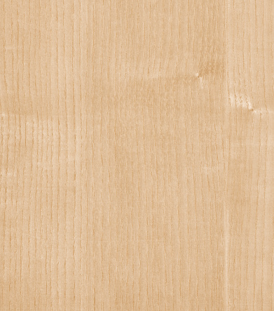 natural white ash wood texture