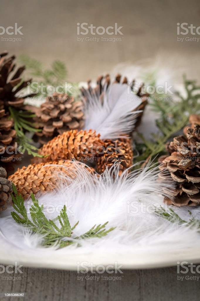 Collection of textured objects from woodland displayed on platter....