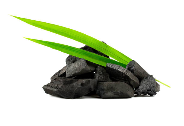natural wood charcoal,bamboo charcoal powder has medicinal properties with traditional charcoal isolated on white background - coal stock pictures, royalty-free photos & images