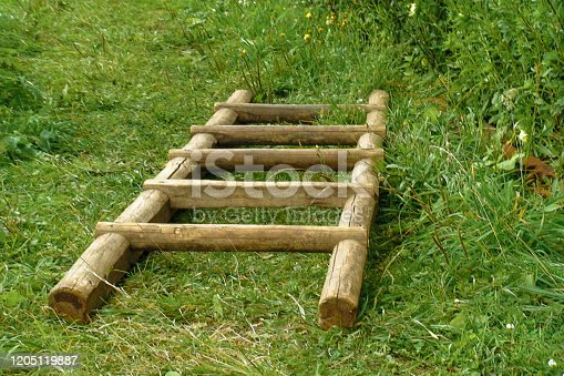 Natural wooden stairs lie on green grass on a clear day. Handcrafted light brown ladder lying on the ground. Design background. Copy space for text. Minimal composition.