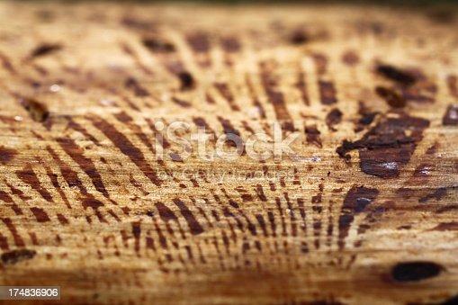 istock Natural wooden texture 174836906