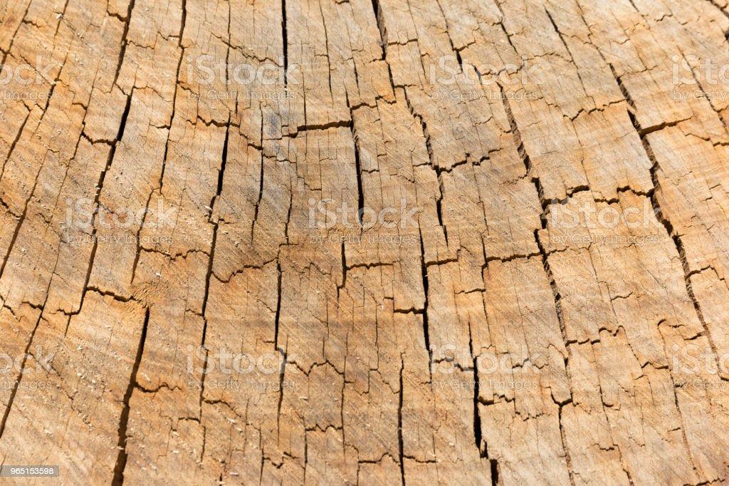 Natural Wooden Wall royalty-free stock photo