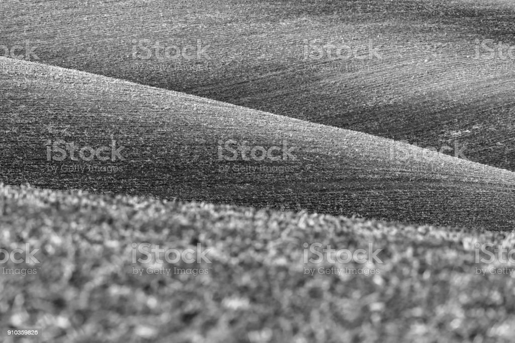Nature abstract background, lines of ground, black and white stock photo