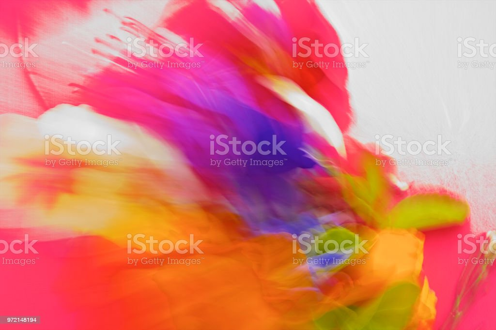 Nature, Abstract Vibrant,Bold Coloured Pantones stock photo
