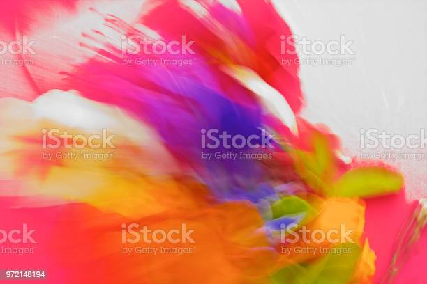 Photo of Nature, Abstract Vibrant,Bold Coloured Pantones