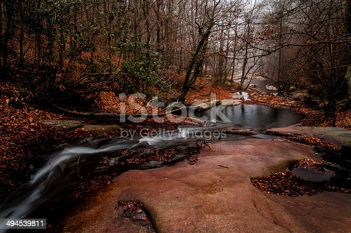 istock Nature, Abstrait, Violet - Image 494539811