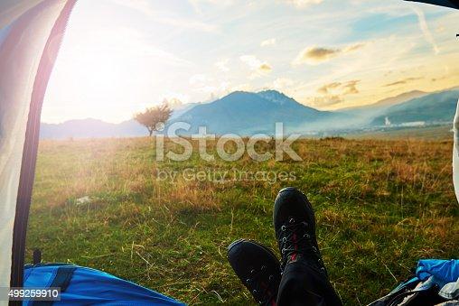 497486952 istock photo nature and freedom 499259910