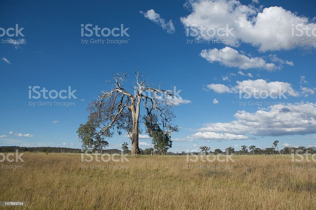 nature and landscape royalty-free stock photo