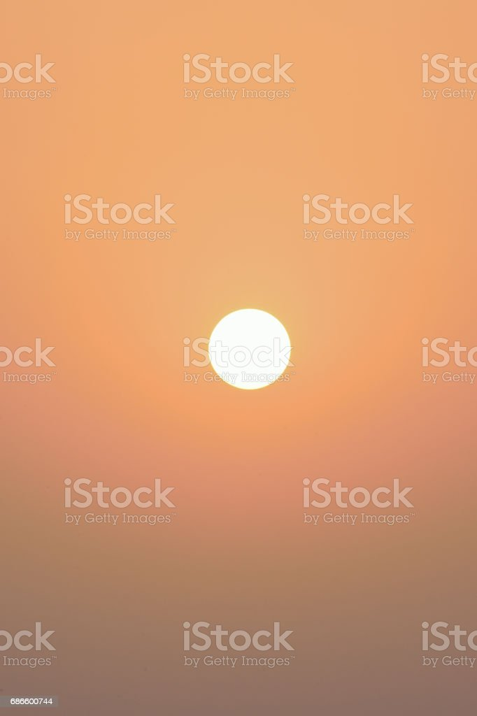 Nature Background early morning summer Sun royalty-free stock photo