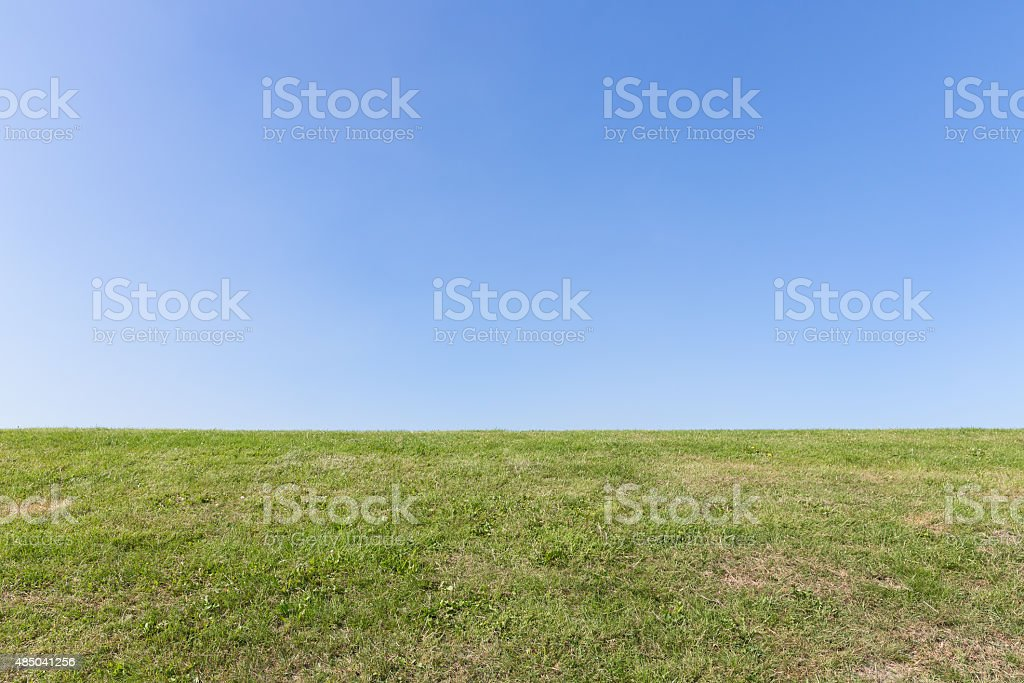 Nature background, green grass with blue sky stock photo