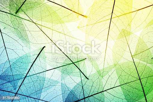 istock nature background 517544950