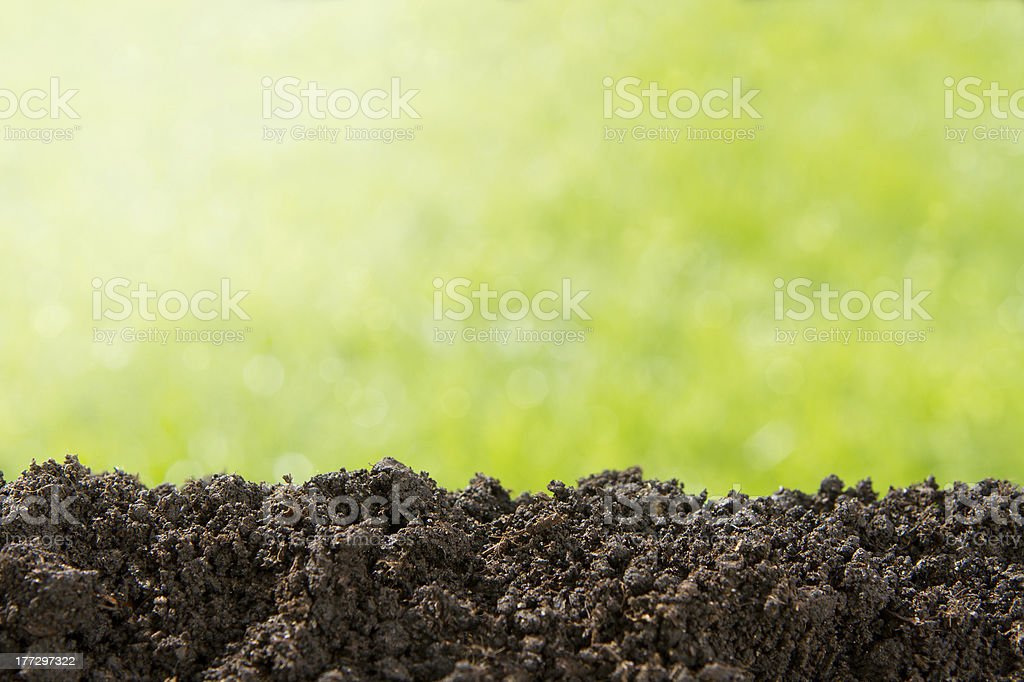 Nature background with copy space stock photo