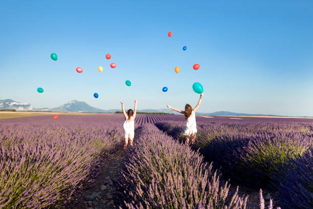 Nature, ballons, lavender stock photo