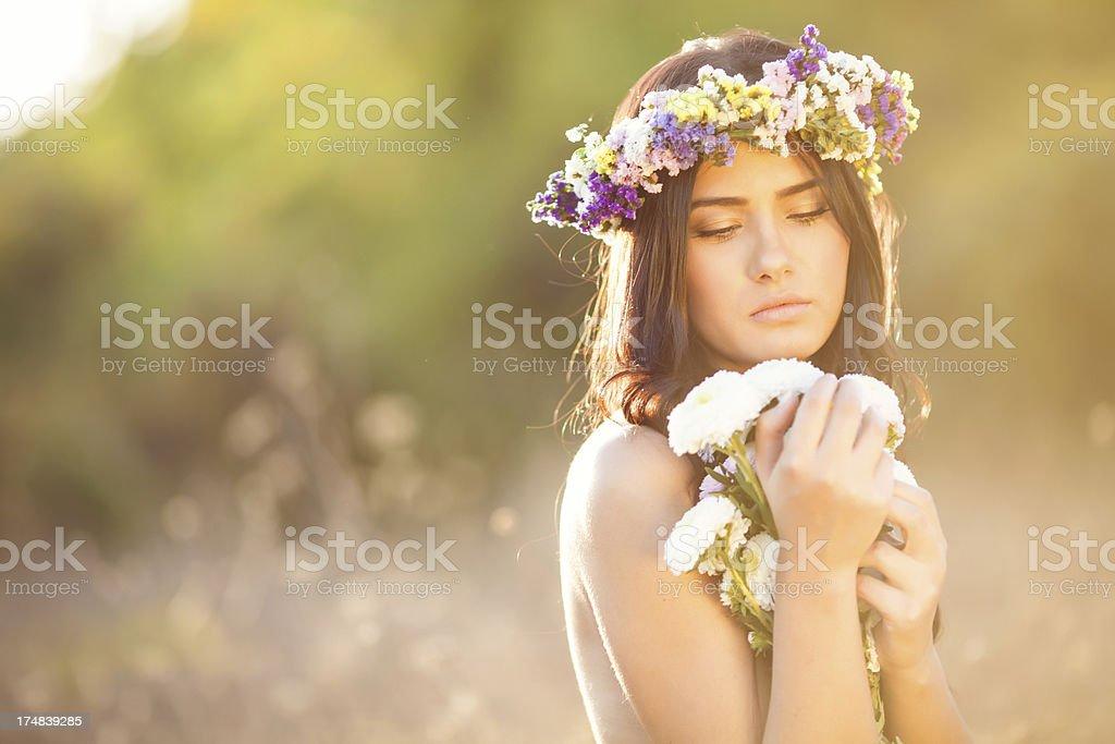 Nature beauty royalty-free stock photo