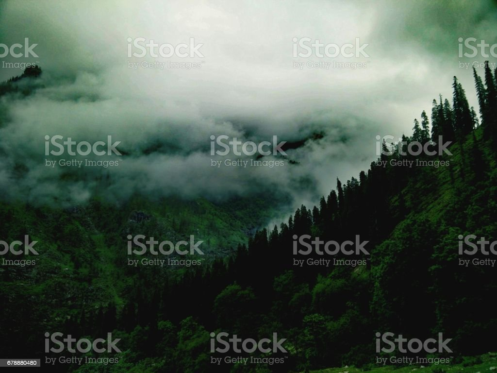 Nature beyond the thinking royalty-free stock photo