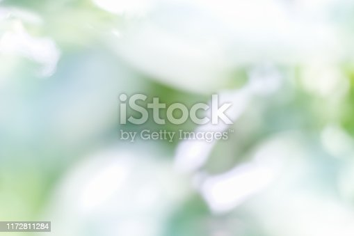 876037346 istock photo Nature blur abstract white green bokeh background.Abstract simple clean natural blur white green bokeh background with light blue shade in the middle 1172811284