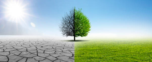 Natur Changing Drought and Green Nature arid stock pictures, royalty-free photos & images