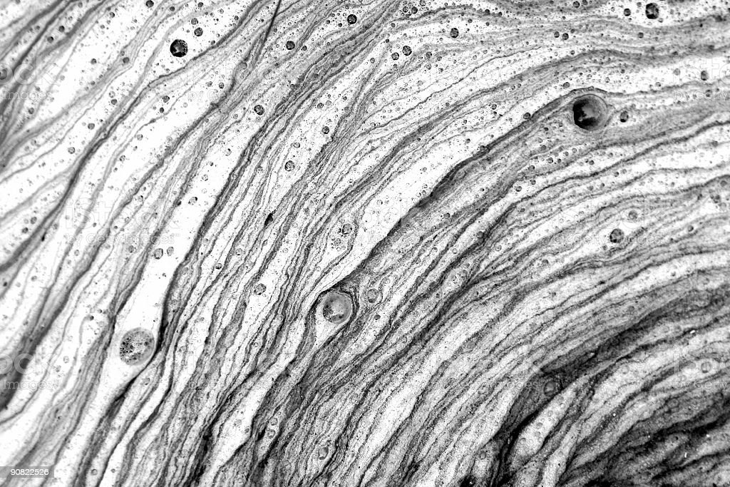Nature close up abstract black and white royalty free stock photo