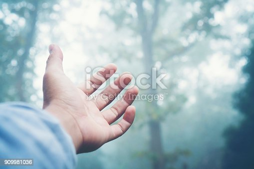istock nature connecting concept 909981036